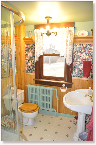 Bed and Breakfast Room 9 private bathroom